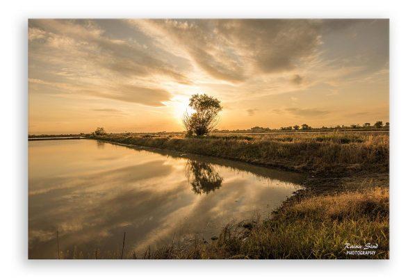 Sunset - Photography Canvas Art Print