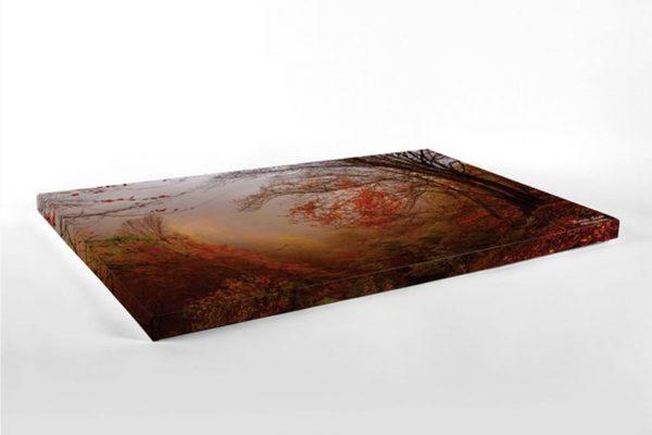 Autumn - Photography Canvas Art Print