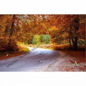 Autumn, Digital Photo - Image File - Stock Image