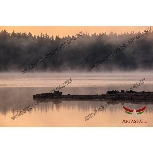 Fog, Digital Photo - Stock Image