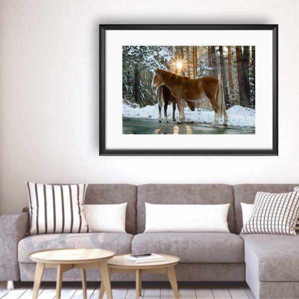 Horses - Photography Framed Art Print