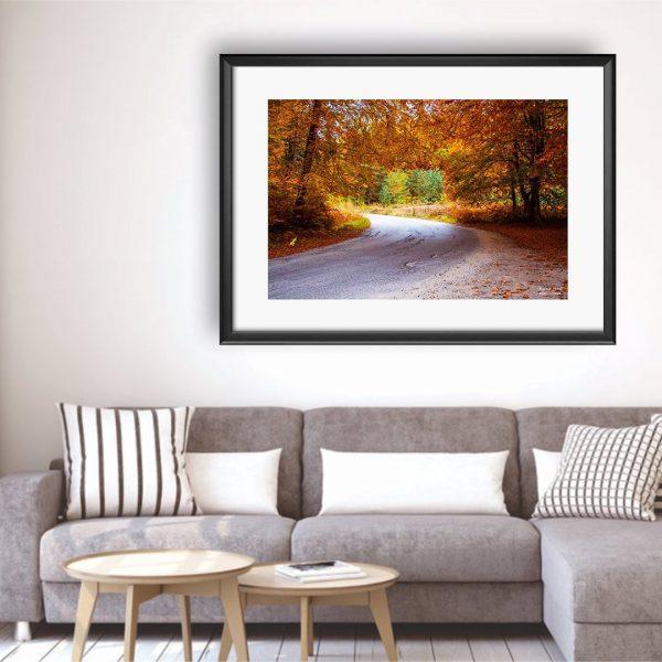 Autumn, Photography Framed Art Print by Raina Sind