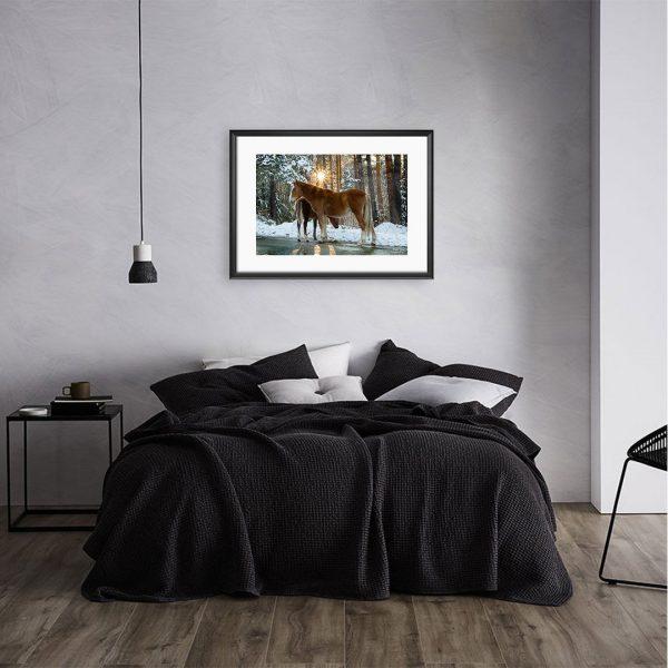 Horses, Photography Framed Art Print by Raina Sind