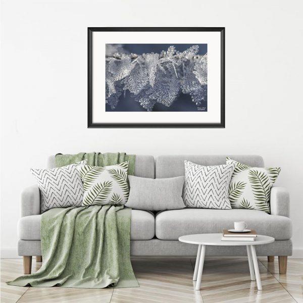 Frozen, Photography Framed Art Print by Raina Sind