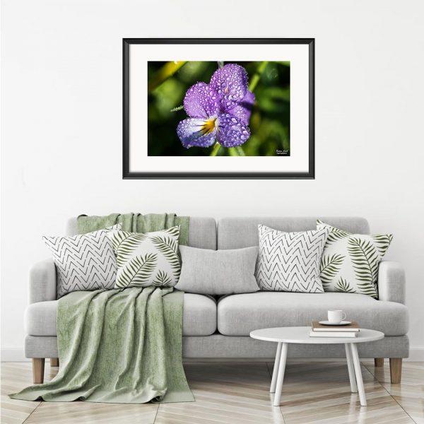 Flower - Photography Framed Art Print