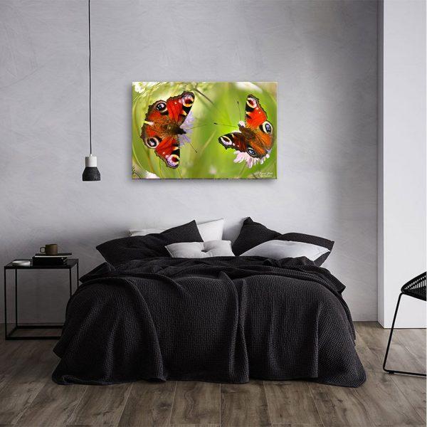 Butterflies - Photography Canvas Art Print