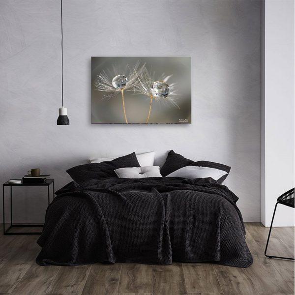 Dandelions - Photography Canvas Art Print