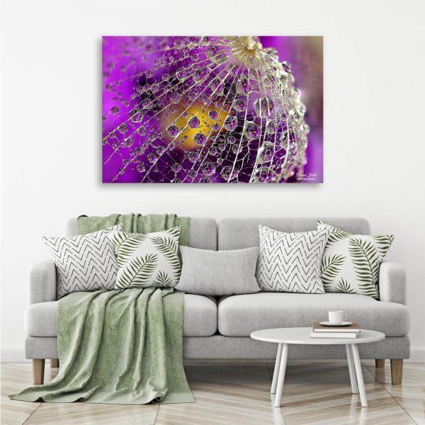 Dandelion - Photography Canvas Art Print